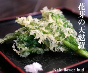 レシピ ケールの花芽の天麩羅
